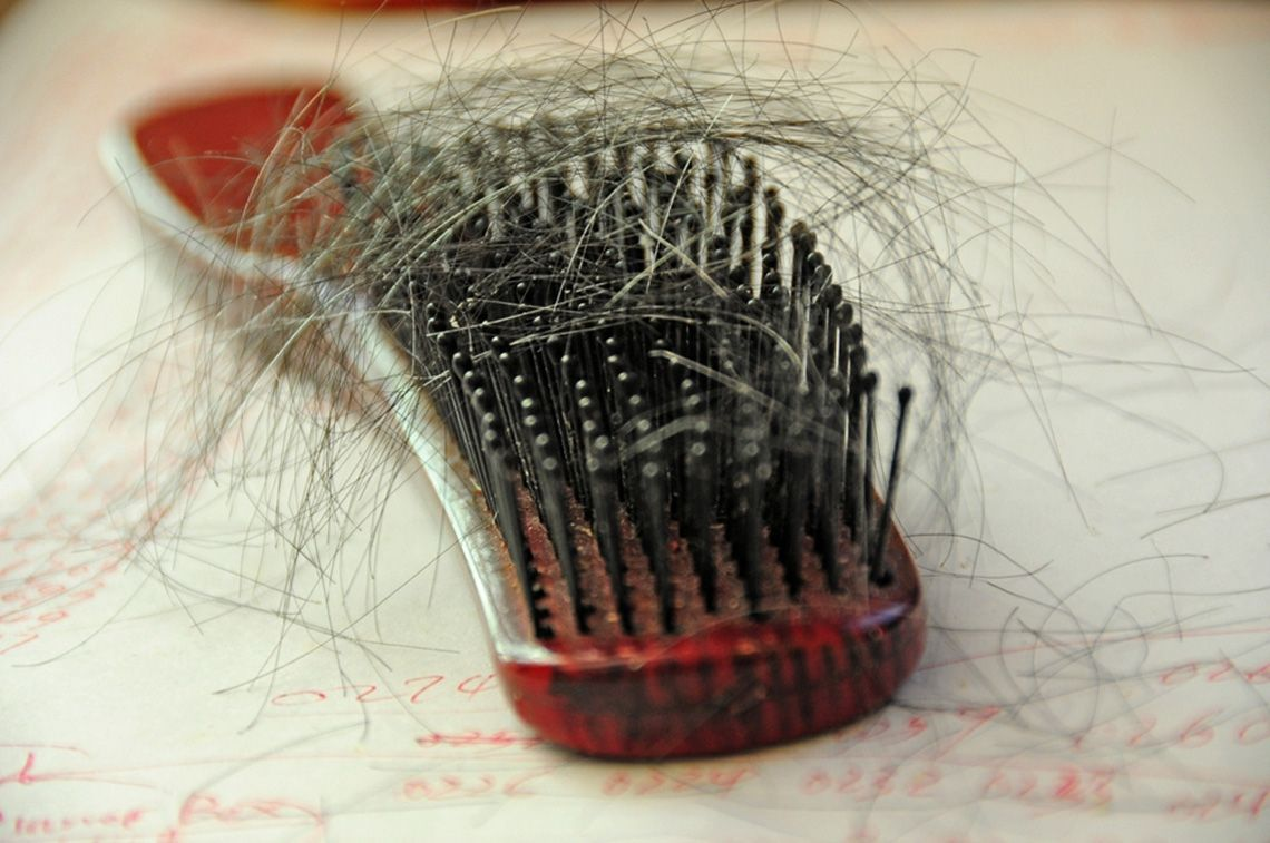 Hair loss on brush